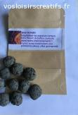 Seed Bombs, bombes de semences, boulettes de graines